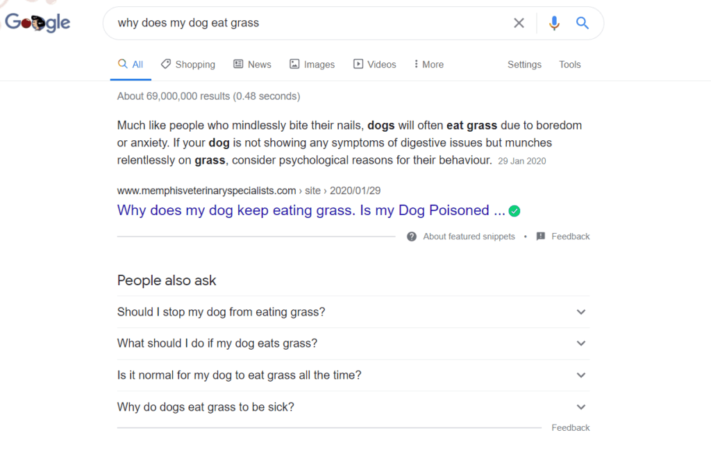 why does my dog eat grass, keyword research