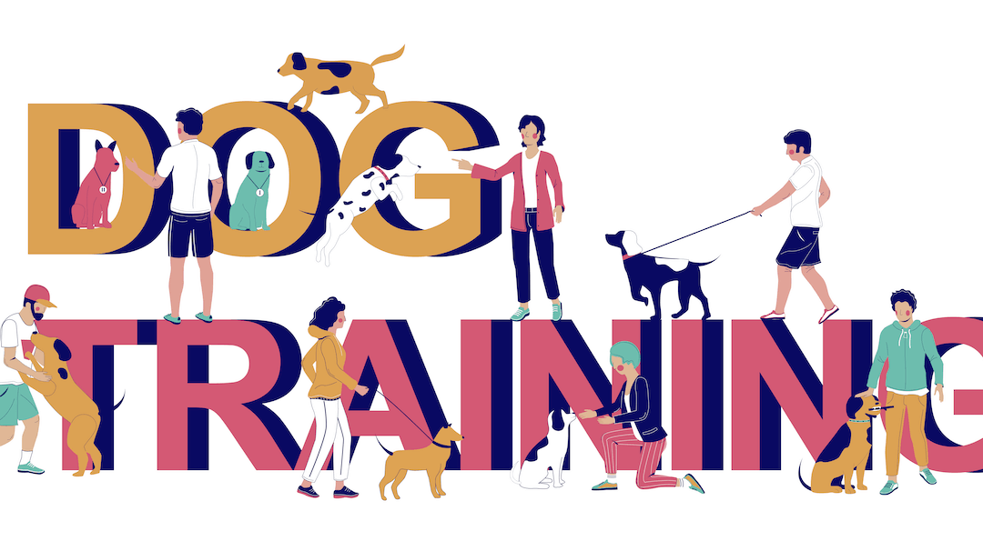 10 blog post ideas for dog trainers to boost your content marketing